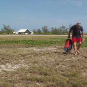 La folle poursuite entre une tortue géante et un reporter