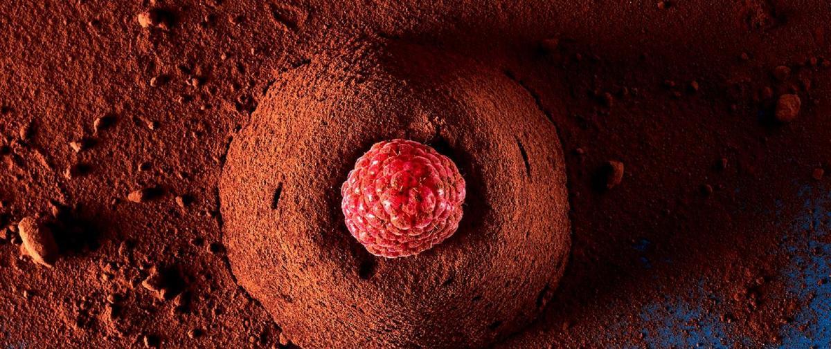 Mousse, moelleux ... Nos recettes de desserts au chocolat pour Noël