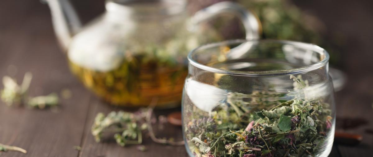 Stress : cinq plantes qui détendent