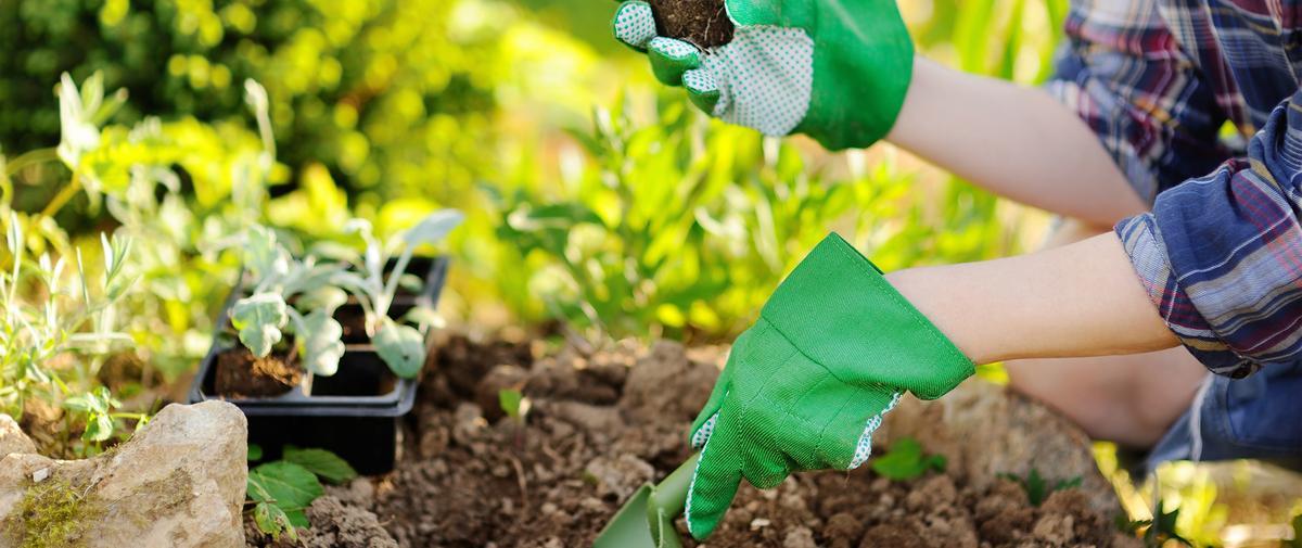 Jardins partagés, compost, écologie : quand les femmes passent à l'action