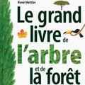 Kif de lecture : tout sur les arbres