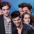 """Le triomphe de """"Twilight"""""""