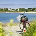 Vacances en roue libre