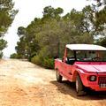 Les dix commandements d'Ibiza