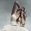 """Concours """"White Swan"""" : les lauréats"""