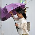 Séoul, dans l'œil du typhon
