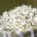 Le retour à Grasse de la parfumerie