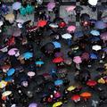 Les parapluies de Prague