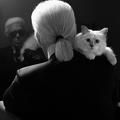 """RIP Daddy"", une collection en hommage à Karl Lagerfeld, ""signée Choupette"""