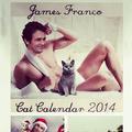 Le chaton sur un James Franco brûlant