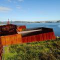 En Tasmanie, l'incroyable musée de David Walsh