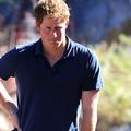 Bernardita Middleton demande le prince Harry en mariage