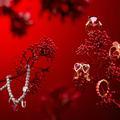 Idées bijoux pour la Saint-Valentin