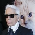 """Karl Lagerfeld : """"Je suis au-delà de la tentation"""""""
