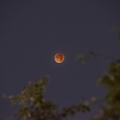 La lune influence-t-elle vraiment nos vies ?