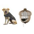 Noël : idées cadeaux pour nos amis les animaux