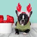 Les 5 questions que vous ne vous êtes jamais posées sur Noël