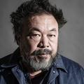 Ai Weiwei, l'artiste chinois qui s'installe au Bon Marché
