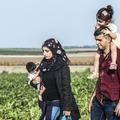 """""""Sourire n'est pas draguer"""" : le guide des bonnes manières à destination des réfugiés d'Allemagne"""