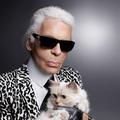 Portfolio : 19 artistes immortalisés par Karl Lagerfeld