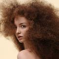 Cheveux : le réveil de la force