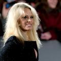 """Pamela Anderson, d'""""Alerte à Malibu"""" à l'Assemblée nationale"""