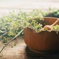 Lutter contre la peau grasse grâce à la phytothérapie