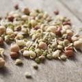 Quelles graines germées choisir pour quels bienfaits ?