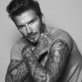 David Beckham ambassadeur des soins pour homme de Biotherm