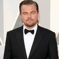 Leonardo DiCaprio embrasse Nina Agdal sur une plage de Malibu