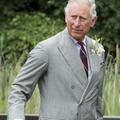 Le prince Charles a touché un salaire record en 2016
