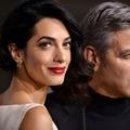 George Clooney : quand les fans lui préfèrent Amal