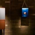 Hermès et sa nouvelle collection design pour la maison