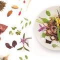 Quel est votre profil culinaire ?