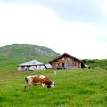 Gstaad en mode sac à dos et hors des sentiers battus!