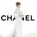Chanel : le camélia, la fleur emblème de la maison