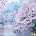 Évadez-vous à Tokyo sans bouger de Paris