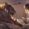 """""""Un tigre en banlieue"""", l'attendrissante fable publicitaire du WWF"""
