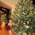 Les sapins de Noël des stars les plus impressionnants