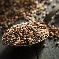 Quels sont les aliments les plus riches en magnésium ?