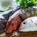 Cinq produits de la mer qui changent, à tester chez le poissonnier