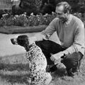Biden, Obama, Chirac, Macron... En photos, les présidents et leurs chiens