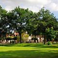 Le golf du Lys Chantilly, l'esprit country club