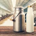 Comment remplacer le lait de vache dans son alimentation?