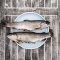 """""""L'ikejime"""" ou """"tuer vivant"""", la méthode japonaise pour sublimer le goût du poisson"""