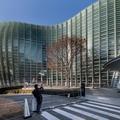 Entre kawaï et zen, balade urbaine et contemporaine dans Tokyo