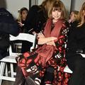 Un mois de Fashion Week et (presque) une seule paire de chaussures pour Anna Wintour