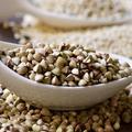Quinoa, sarrasin, épeautre, que valent vraiment ces céréales ?