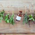 Phytothérapie : 5 plantes minceur