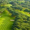 Golf: quatre compétitions dépaysantes pour l'hiver